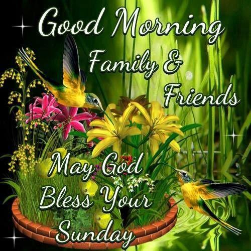 Good Morning Sunday God : Good morning family friends may god bless your sunday
