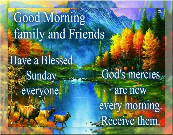 Good Morning Family And Friends, Have A Blessed Sunday