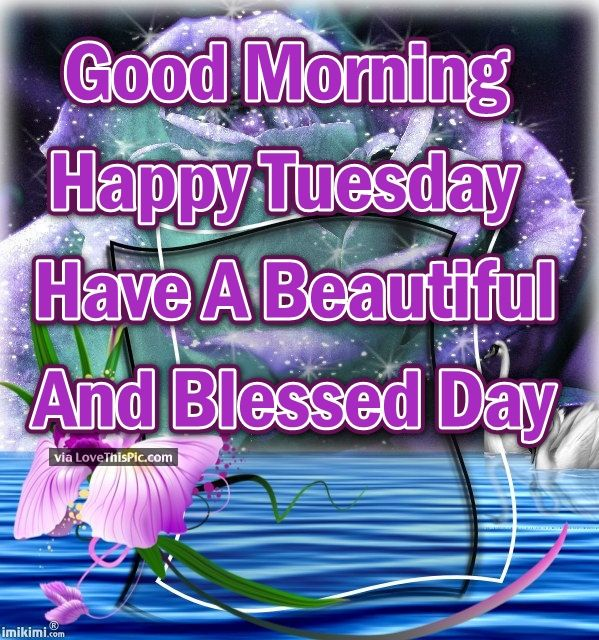 Good Morning Happy Tuesday Have A Beautiful Blessed Day ...
