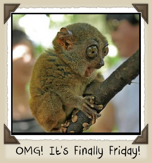 omg it s finally friday pictures photos and images for