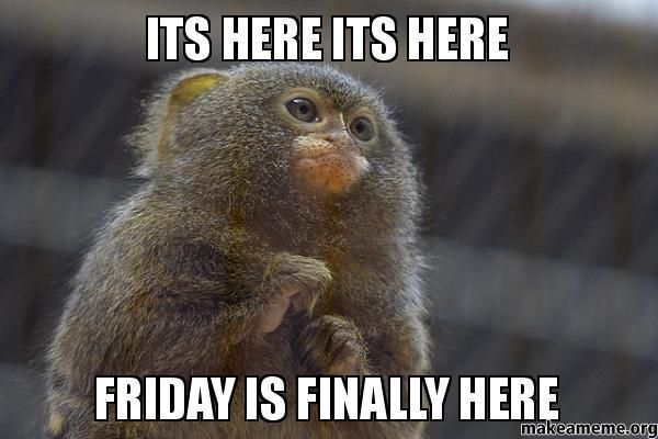 Finally Friday Funny Meme : Friday is finally here pictures photos and images for