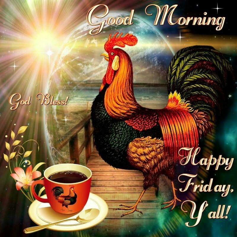 Good Morning, God Bless Happy Friday Yall Pictures, Photos