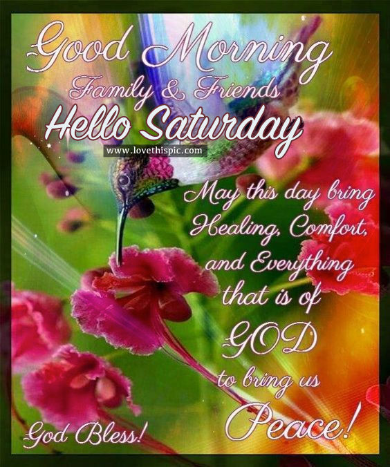 Good Morning Saturday Friends : Good morning family friends hello saturday pictures