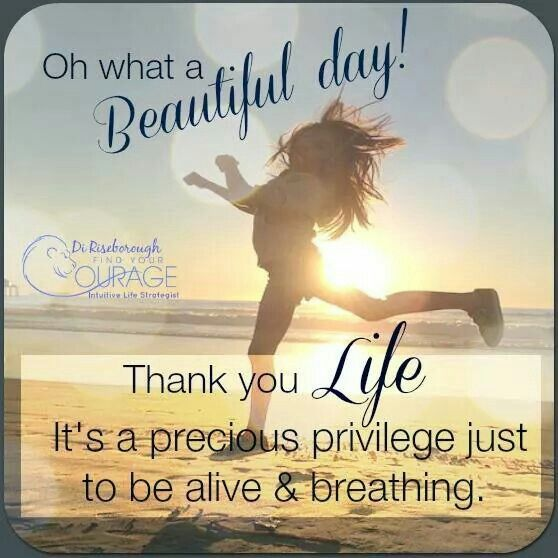 Inspirational Day Quotes: Oh What A Beautiful Day Pictures, Photos, And Images For