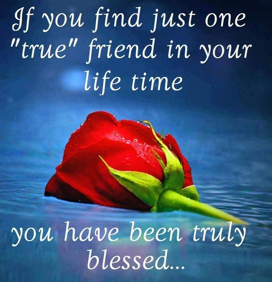 Friend Quotes If You Find Just One True Friend In Your Lifetime You Are Truly