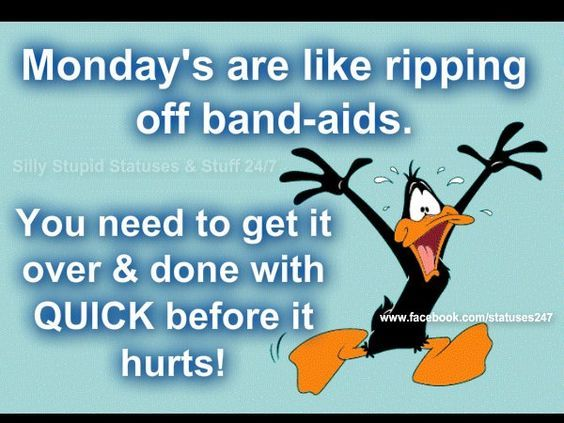 Mondays Rae Like Ripping Off Bandaids Pictures Photos