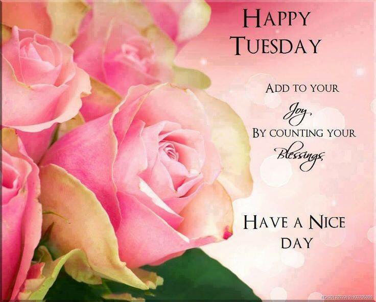 Happy Tuesday Have A Nice Day Pictures, Photos, And Images