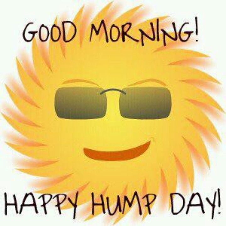 Have A Good Day Honey Quotes: Good Morning! Happy Hump Day! Pictures, Photos, And Images