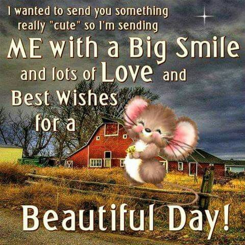 Sending A Big Smile Good Morning Pictures Photos And