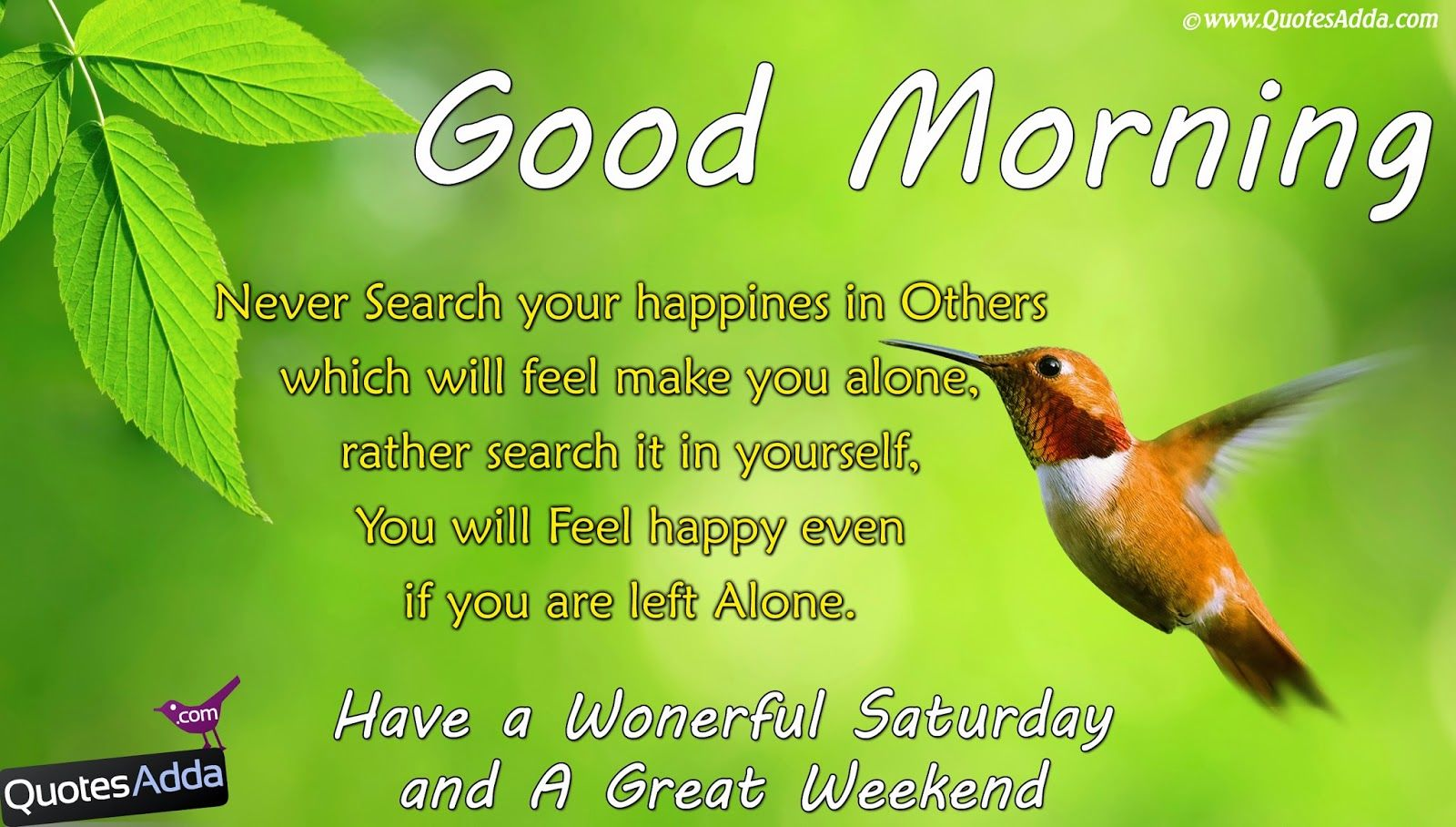 Good Morning Saturday Have A Wonderful Weekend : Good morning have a wonderful saturday and great