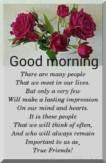 Good Morning My Beautiful Friend Quotes: Good Morning True Friends Pictures, Photos, And Images For