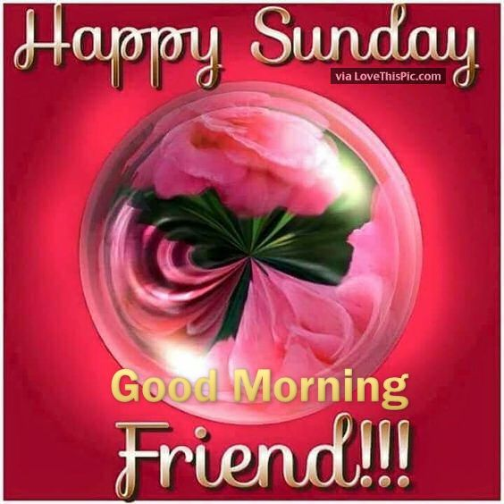 Good Morning Happy Sunday My Friend : Happy sunday good morning friend pictures photos and
