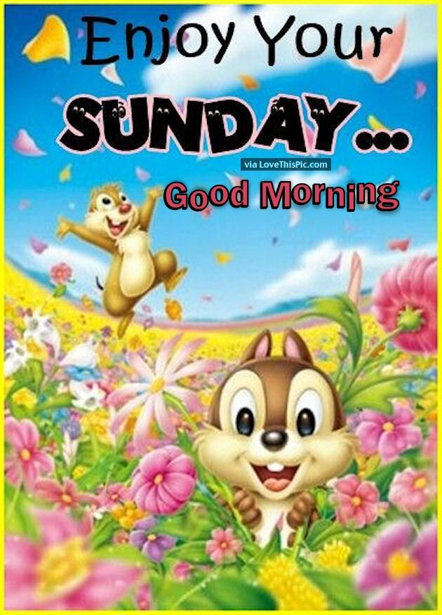 Enjoy Your Saturday Good Morning Cute Quote