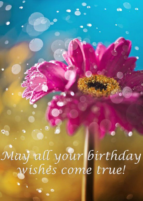 May All Your Birthday Wishes Come True Pictures Photos and – Birthday Cards for Facebook