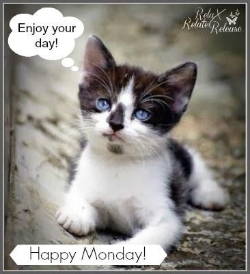 Image result for enjoy your monday pix