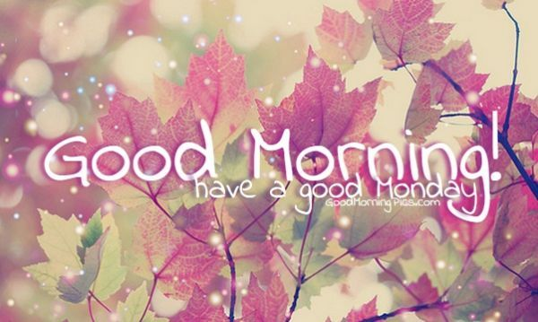 Good morning have a good monday pictures photos and - Good morning monday images ...