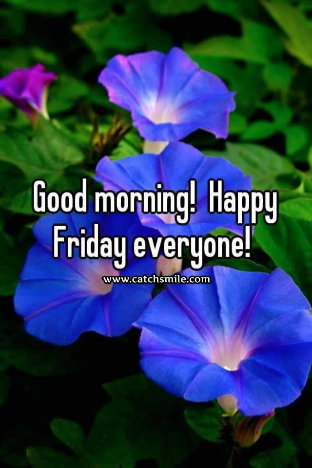 Good Morning Beautiful Happy Friday : Tuesday blessings facebook quotes