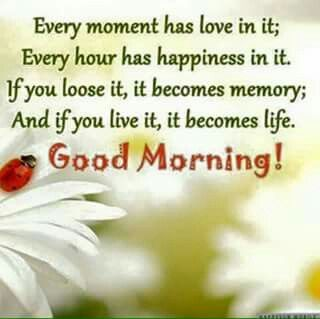 Morning Life Quotes Mesmerizing Love Happiness Life Good Morning Pictures Photos And Images For