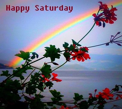 Happy Saturday Rainbow And Flowers Pictures Photos And