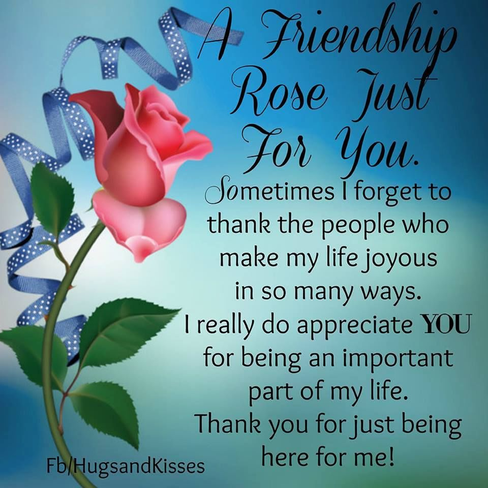 A Friendship Rose Just For You Pictures, Photos, and ...