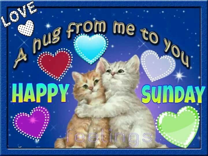Image result for sending sunday blessings cute animals