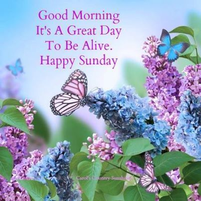 Good Morning Happy Sunday It's Good To Be Alive Pictures ...