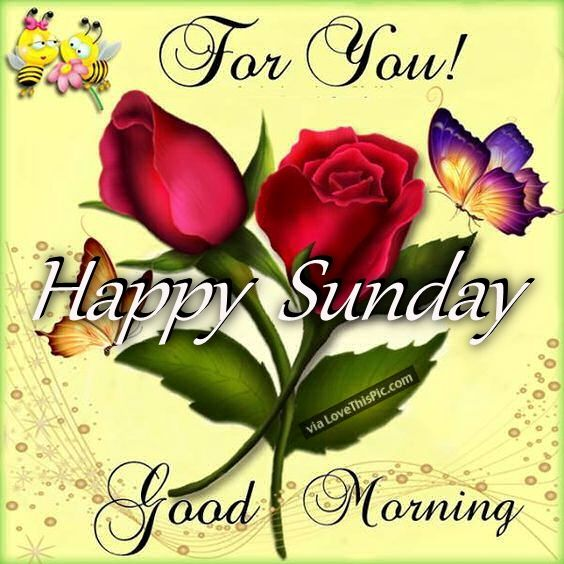 Good Morning And Happy Sunday Love Message : For you happy sunday good morning pictures photos and