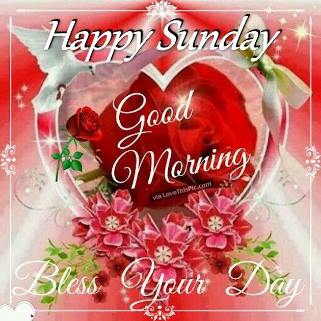 Good Morning Sunday Love Pics : Happy sunday good morning bless your day pictures photos