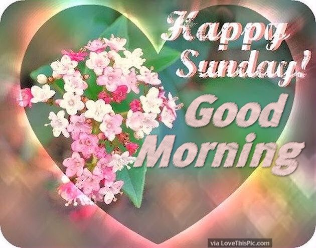 Good Morning Sunday Flowers Images : Happy sunday good morning flowers and hearts pictures