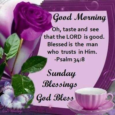 Good Morning Sunday Blessings Pictures Photos And Images