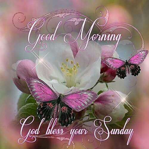 Good Morning Sunday God Photos : Good morning god bless your sunday pictures photos and