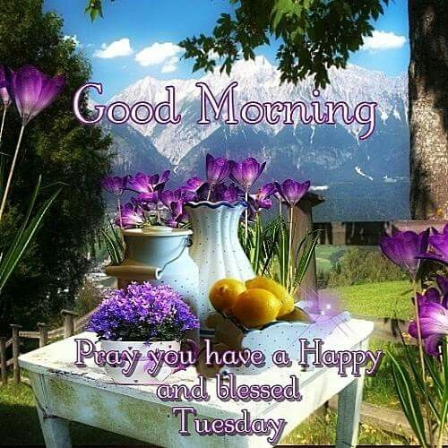 Good Morning, Pray You Have A Happy And Blessed Tuesday ...