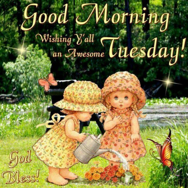 Good Morning Y All : Good morning wishing y all an awesome tuesday pictures