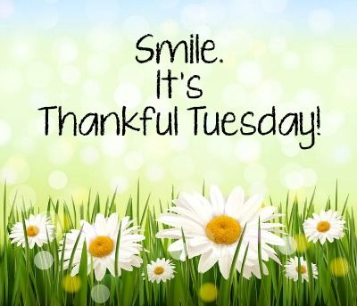 Smile Its Thankful Tuesday Pictures Photos And Images