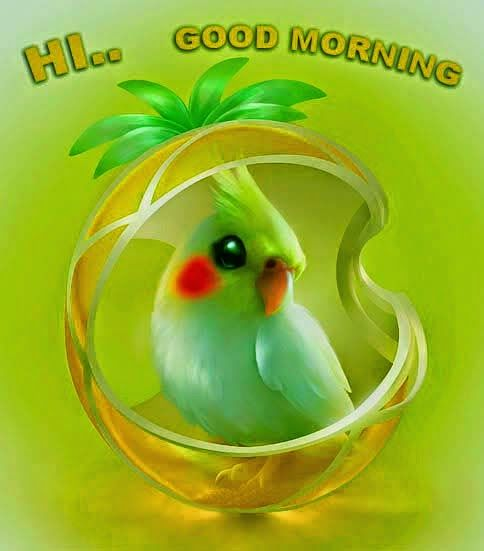 Hi Good Morning Quotes: Hi...Good Morning Pictures, Photos, And Images For