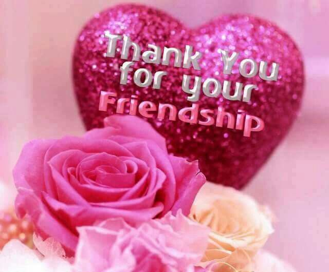 Image result for thank you for your friendship