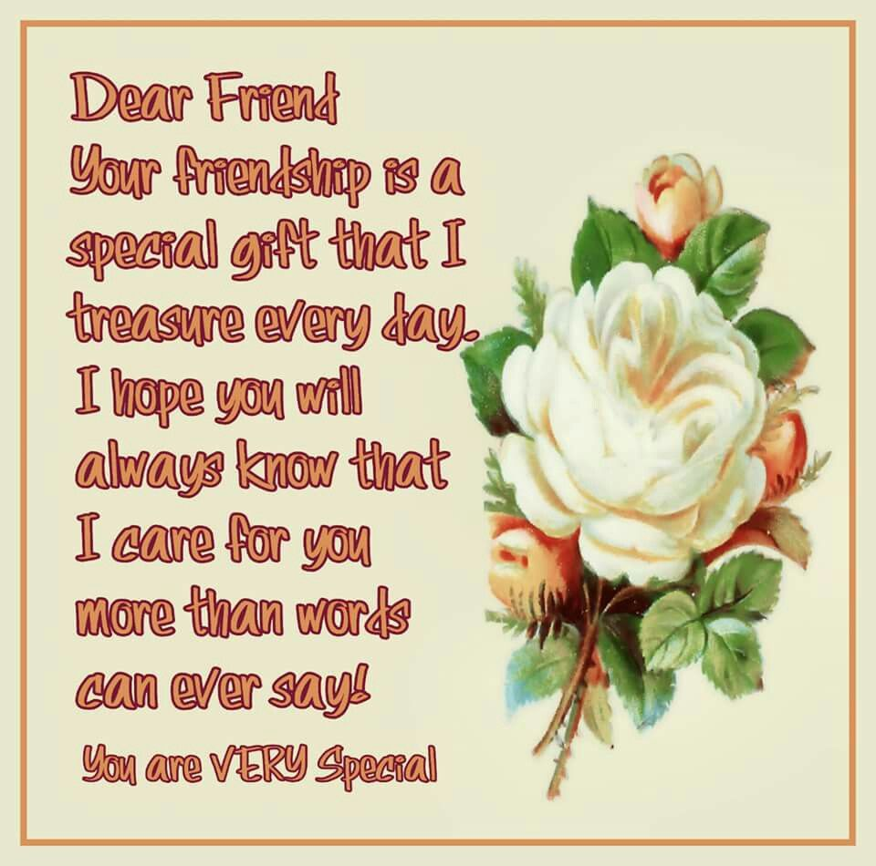 Dear Friend Your Friendship Is A Special Gift That I Treasure Every