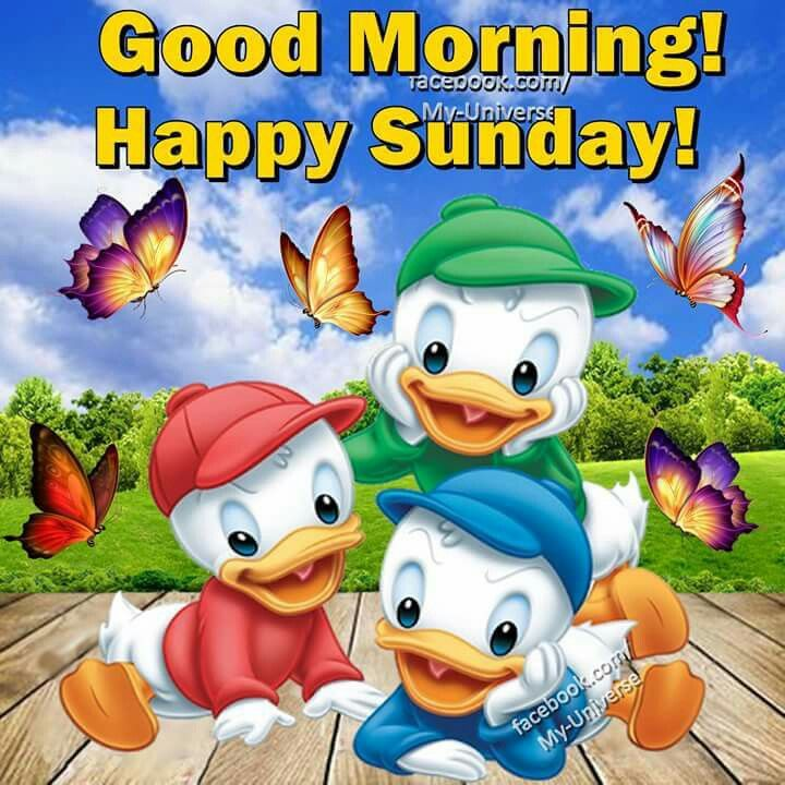 Good Morning Sunday Happy : Good morning happy sunday pictures photos and images