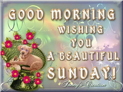 Good Morning Wishing You A Beautiful Sunday Quote