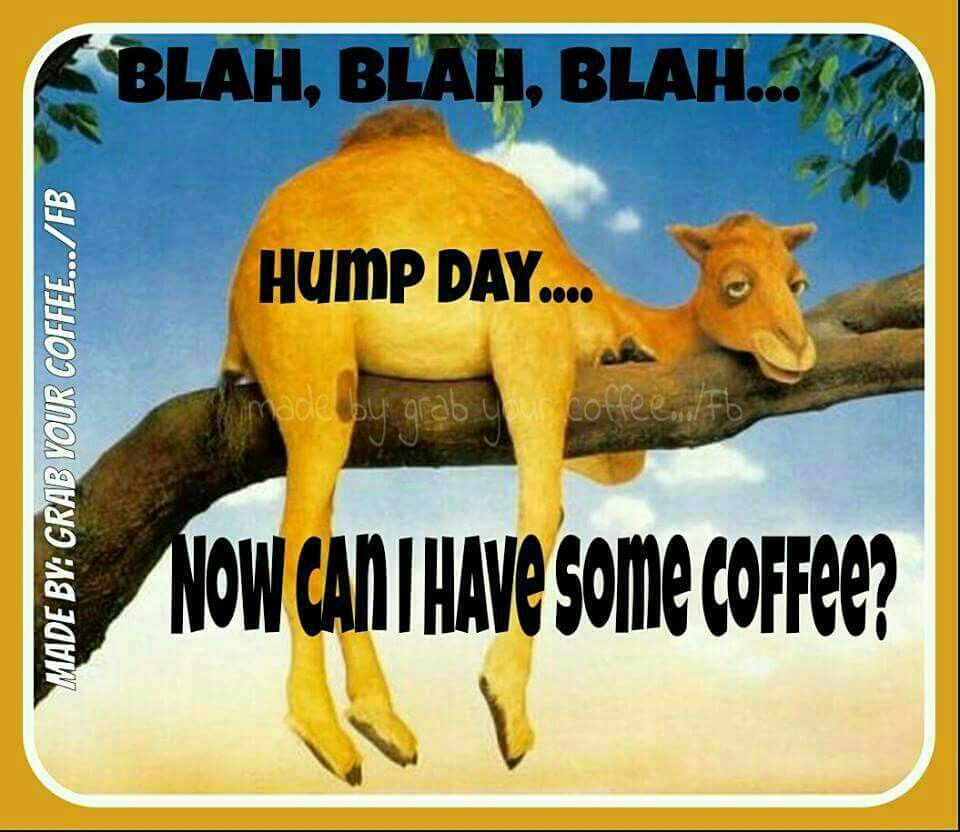 Blah Blah Blah Hump Day Can I Have Coffee Pictures, Photos, and Images ... Wednesday Coffee Quotes