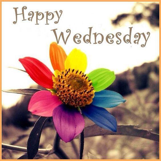 Happy Wednesday! ️ | Greetings & More! | Pinterest | Happy ... |Wednesday Flowers