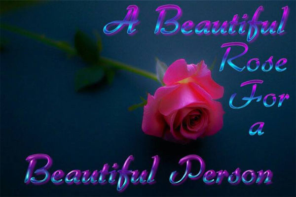 A Beautiful Rose For A Beautiful Person Pictures Photos