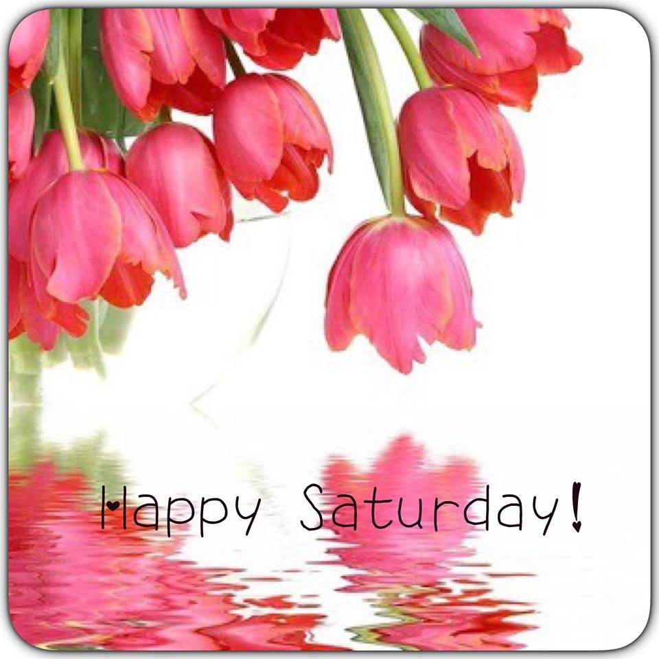 Happy Saturday Flowers Pictures Photos And Images For