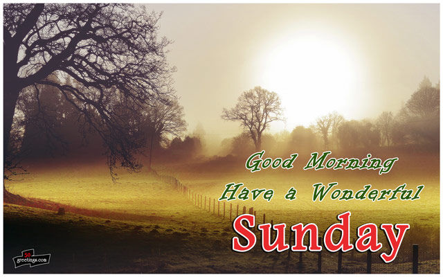 good morning have a wonderful sunday pictures photos