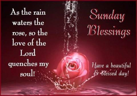 Sunday Blessings, Have A Beautiful Blessed Day Pictures