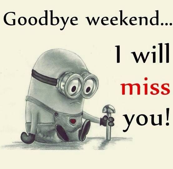 Goodbye Weekend I Will Miss You Pictures Photos And