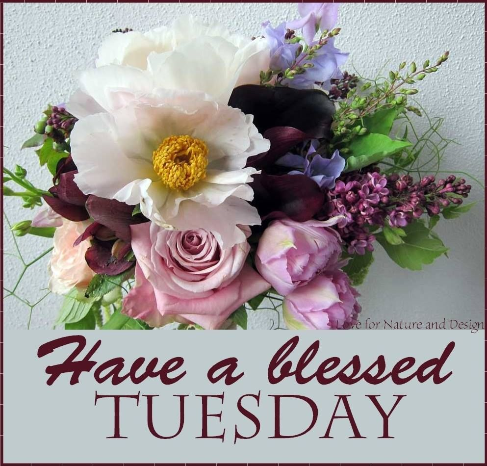 Have A Blessed Tuesday Flower Bouquet Pictures Photos