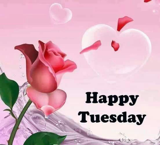 Happy Tuesday Rose And Heart Pictures Photos And Images