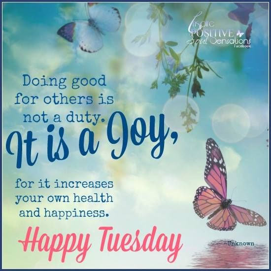 Image result for happy tuesday quotes