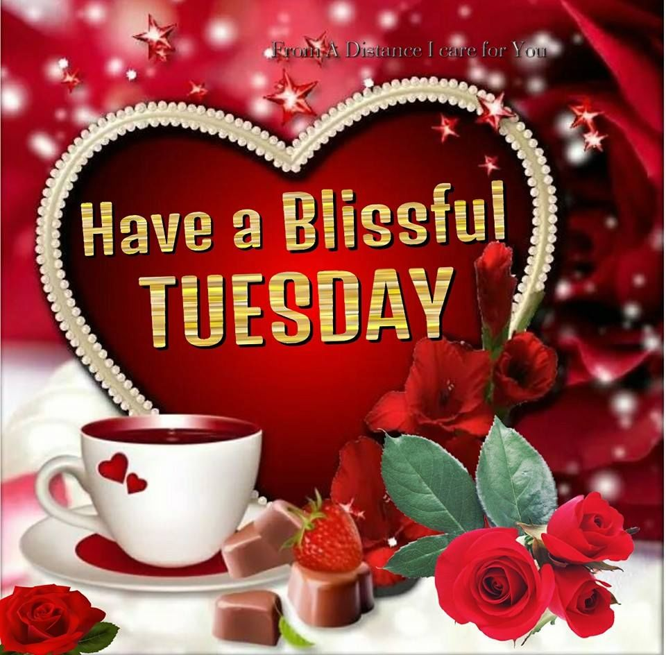 Have A Blissful Tuesday Pictures, Photos, And Images For